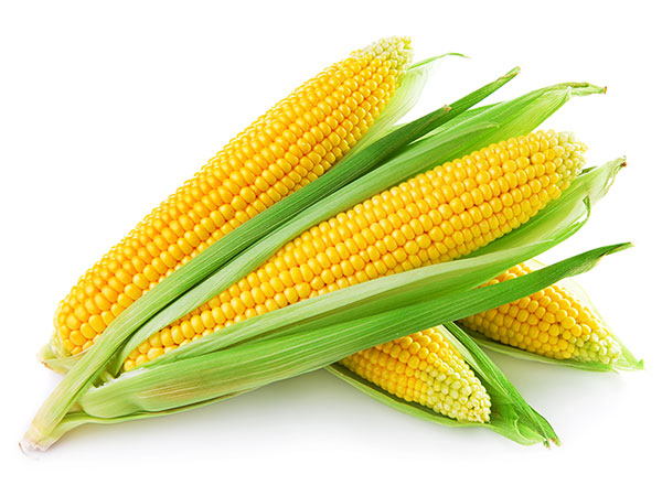 corn-dental-implants